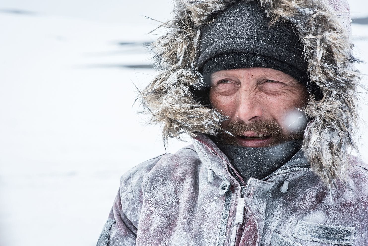 'Arctic.' Film review by Diane Carson.