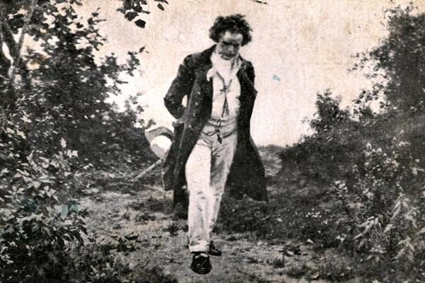 Beethoven's Walk in Nature by Julius Schmid