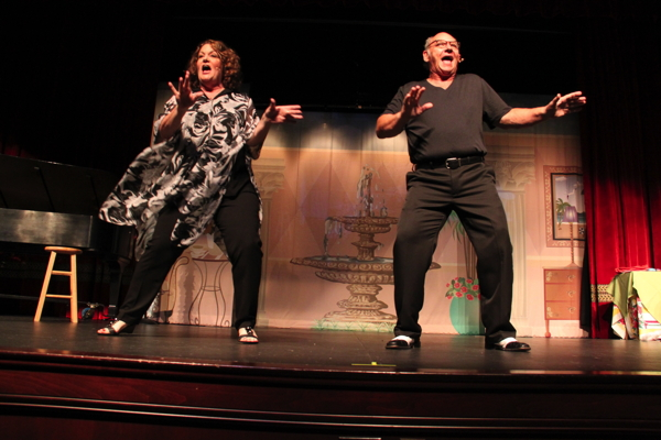 'Assisted Living the musical,' starring Betsy Bennett and Rick Compton, at the Playhouse at Westport Plaza.